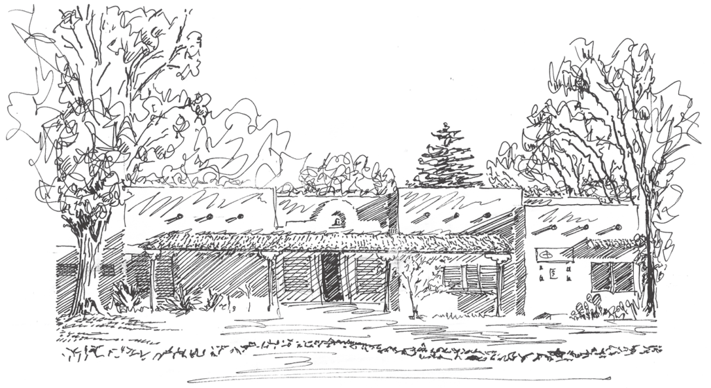 A pencil sketched image of the Center for Action and Contemplation main building in Albuquerque, New Mexico showcasing an adobe-style home with large Cottonwood trees towering the landscape, with a single large pine tree is seen in the very back.